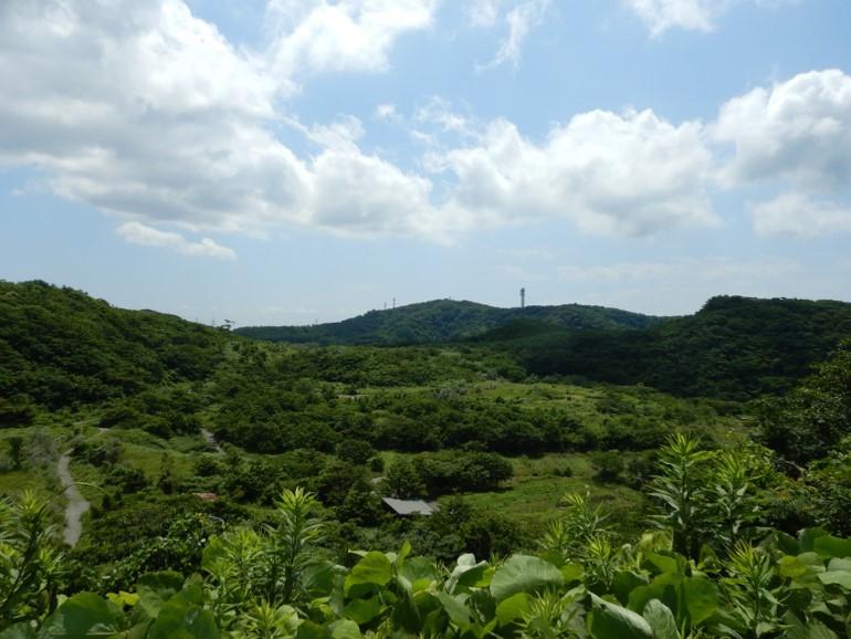 あかりの森プロジェクト No.004<br>「土地本来の森を再生!湘南国際村めぐりの森」